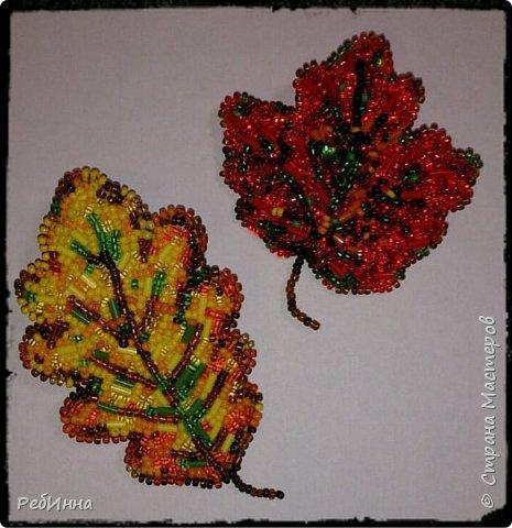 Мне очень нравятся осенние листья, они такие необыкновенные, такие яркие и столько в них красок намешано, что просто дух захватывает! Не удержалась и вышила броши, сначала кленовый лист, а потом и дубовый, теперь думаю о жёлуде)))  фото 1