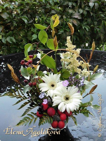 Добрый день! Сегодня я к вам с осенними композициями из цветов и листьев.  Этим летом я решила осуществить еще одну свою мечту - научится цветочному дизайну. Очень люблю цветы, травки-муравки, деревья и вообще все растения. Очень увлекательно работать с цветами! Я взяла небольшой курс по цветочному дизайну. Дома делаю оранжировки из того что под рукой, беру цветы которые под рукой и из своего садика. Конечно сейчас почти все отцвели...  Другие композиции делала для цветочного магазина где начала работать. Делюсь красотой! фото 12