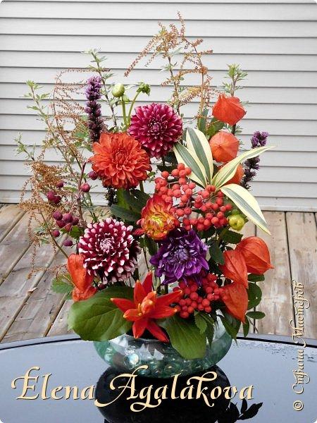 Добрый день! Сегодня я к вам с осенними композициями из цветов и листьев.  Этим летом я решила осуществить еще одну свою мечту - научится цветочному дизайну. Очень люблю цветы, травки-муравки, деревья и вообще все растения. Очень увлекательно работать с цветами! Я взяла небольшой курс по цветочному дизайну. Дома делаю оранжировки из того что под рукой, беру цветы которые под рукой и из своего садика. Конечно сейчас почти все отцвели...  Другие композиции делала для цветочного магазина где начала работать. Делюсь красотой! фото 5