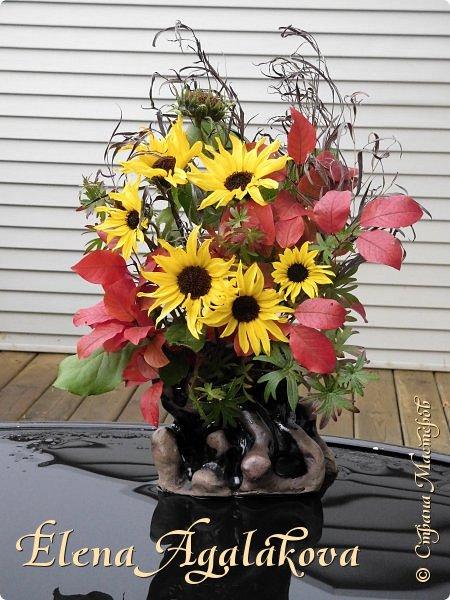 Добрый день! Сегодня я к вам с осенними композициями из цветов и листьев.  Этим летом я решила осуществить еще одну свою мечту - научится цветочному дизайну. Очень люблю цветы, травки-муравки, деревья и вообще все растения. Очень увлекательно работать с цветами! Я взяла небольшой курс по цветочному дизайну. Дома делаю оранжировки из того что под рукой, беру цветы которые под рукой и из своего садика. Конечно сейчас почти все отцвели...  Другие композиции делала для цветочного магазина где начала работать. Делюсь красотой! фото 3