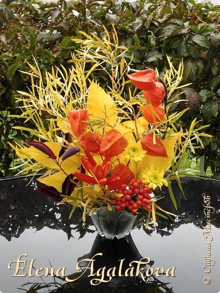 Добрый день! Сегодня я к вам с осенними композициями из цветов и листьев.  Этим летом я решила осуществить еще одну свою мечту - научится цветочному дизайну. Очень люблю цветы, травки-муравки, деревья и вообще все растения. Очень увлекательно работать с цветами! Я взяла небольшой курс по цветочному дизайну. Дома делаю оранжировки из того что под рукой, беру цветы которые под рукой и из своего садика. Конечно сейчас почти все отцвели...  Другие композиции делала для цветочного магазина где начала работать. Делюсь красотой! фото 11