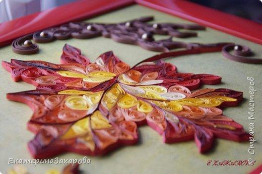 Сказочная вариация кленовых листьев. фото 2