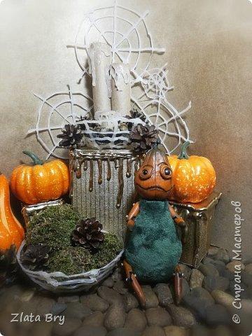 Ну и снова мои любимые страшилки, на этот раз вот такой вот урожай тыковок у меня получился фото 3