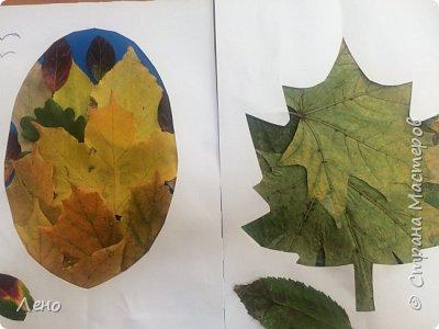 Аппликация из листьев фото 3