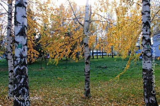 Всем доброго времени суток! Сегодня я обращаюсь ко всем, кто любит осень с ее красотой и не предсказуемом характером. Я уверена, что прогулка со мной по осеннему парку принесет вам много ярких эмоций и позитива. Что касается меня, то я за время этой прогулки испытала настоящий восторг и восхищение. Было такое чувство, что я побывала в гостях у сказки, и этим чувством я хочу поделиться с вами. Приятного просмотра! фото 72