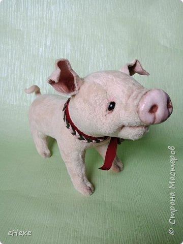 Свинка Лялька родилась по выкройке и вебинару Янины Орса. Пятачок, ушки, веки и украшение я сделала из натуральной кожи. фото 2