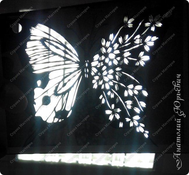 """Всем доброго времени суток! Вашему вниманию хочу представить несколько  новых работ. Бабочки для украшения и интерьера. - Решил сделать бабочек """"найденных"""" на просторах интернета. - Немного изменил и сделал по своему. - Вырезано из картона с тиснением под """"кожу"""" (плотность 230г/м2). фото 3"""