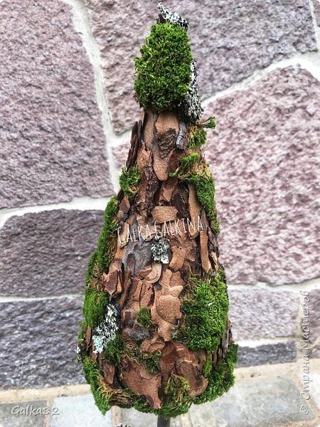 Всем привет)))) вот такие елочки в эко стиле ))) высота около 50 см  фото 4