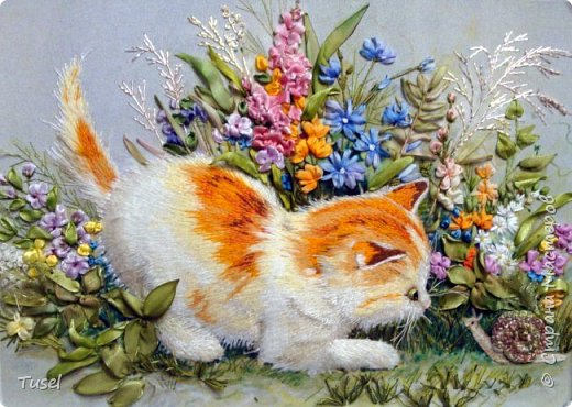 Котенок и улитка фото 1