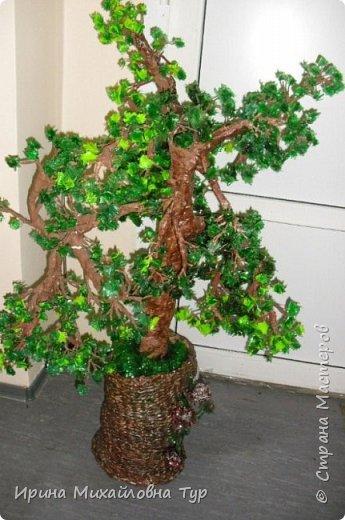Дерево из пластиковых бутылок