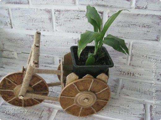Поросята-копилки, свинка корзинка, любимые африканки, вазочки. фото 30