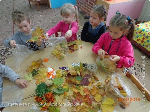 Детский мастер-класс поделки из природного материала «Сова» Представляем вашему вниманию поделки из осенних листьев, которые можно сделать легко и просто своими руками. фото 3