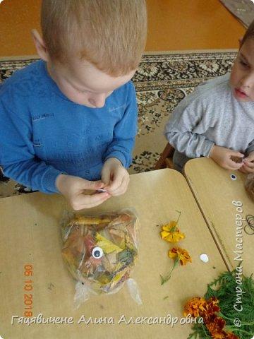 Детский мастер-класс поделки из природного материала «Сова» Представляем вашему вниманию поделки из осенних листьев, которые можно сделать легко и просто своими руками. фото 5
