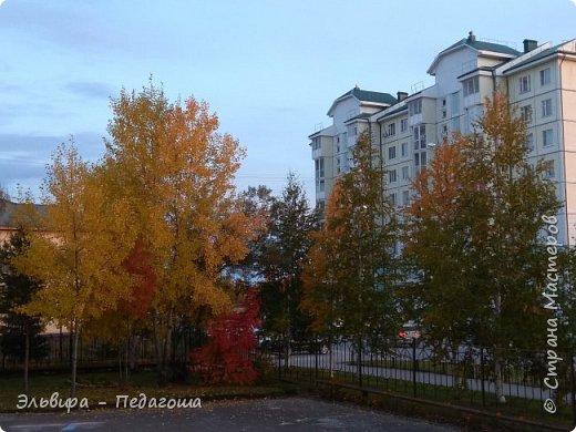 """Какая же в этом году красивая осень была. Просто бесподобная! Так долго держались листики на деревьях, и вот подул ветерок.... листья закружились в хороводе. А один листик оторвался и полетел в своё недолгое путешествие. Эту фотографию я так и назвала """"Путешествие осеннего листика"""".  фото 20"""