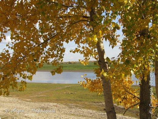 """Какая же в этом году красивая осень была. Просто бесподобная! Так долго держались листики на деревьях, и вот подул ветерок.... листья закружились в хороводе. А один листик оторвался и полетел в своё недолгое путешествие. Эту фотографию я так и назвала """"Путешествие осеннего листика"""".  фото 4"""