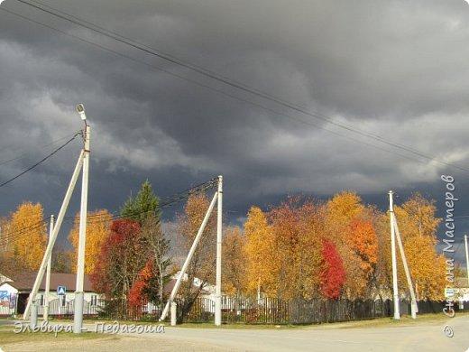 """Какая же в этом году красивая осень была. Просто бесподобная! Так долго держались листики на деревьях, и вот подул ветерок.... листья закружились в хороводе. А один листик оторвался и полетел в своё недолгое путешествие. Эту фотографию я так и назвала """"Путешествие осеннего листика"""".  фото 7"""