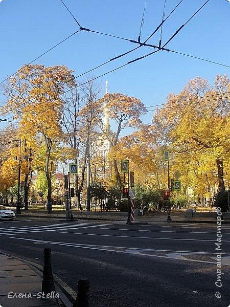 Друзья предлагаю прогуляться по Адмиралтейскому парку (Александровский) В парке много старых деревьев. Сегодня хорошая погодка. Солнце и тепло. Это только часть прогулки, остальное, если получиться в продолжении. Мозаика в вестебюле метро Адмиралтейская. фото 2