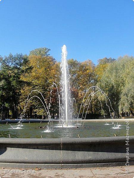 Друзья предлагаю прогуляться по Адмиралтейскому парку (Александровский) В парке много старых деревьев. Сегодня хорошая погодка. Солнце и тепло. Это только часть прогулки, остальное, если получиться в продолжении. Мозаика в вестебюле метро Адмиралтейская. фото 11