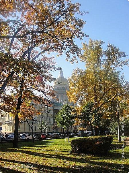 Друзья предлагаю прогуляться по Адмиралтейскому парку (Александровский) В парке много старых деревьев. Сегодня хорошая погодка. Солнце и тепло. Это только часть прогулки, остальное, если получиться в продолжении. Мозаика в вестебюле метро Адмиралтейская. фото 8
