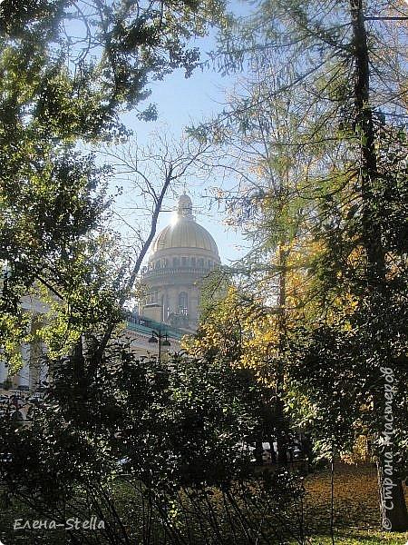 Друзья предлагаю прогуляться по Адмиралтейскому парку (Александровский) В парке много старых деревьев. Сегодня хорошая погодка. Солнце и тепло. Это только часть прогулки, остальное, если получиться в продолжении. Мозаика в вестебюле метро Адмиралтейская. фото 10