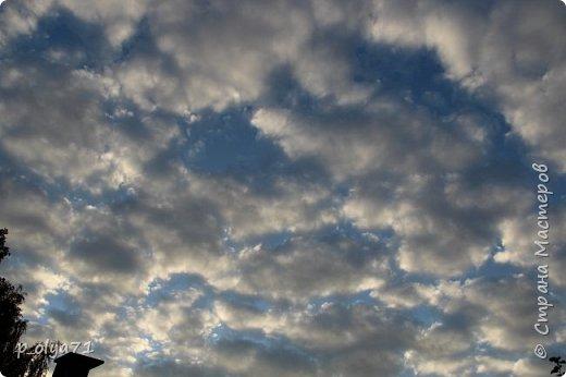 Здравствуйте!!!  Прошла уже половина октября и природа не перестаёт нас радовать своим теплом (сегодня обещали +19,у меня сейчас,в 11часов,показывает +15 в тени))  и красотой!!! фото 4