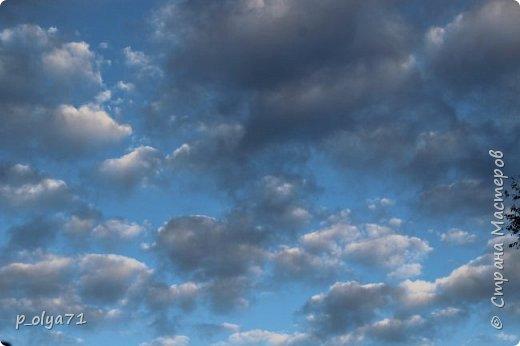 Здравствуйте!!!  Прошла уже половина октября и природа не перестаёт нас радовать своим теплом (сегодня обещали +19,у меня сейчас,в 11часов,показывает +15 в тени))  и красотой!!! фото 3