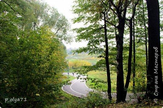 Здравствуйте!!!  Прошла уже половина октября и природа не перестаёт нас радовать своим теплом (сегодня обещали +19,у меня сейчас,в 11часов,показывает +15 в тени))  и красотой!!! фото 58