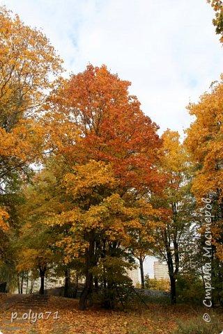 Здравствуйте!!!  Прошла уже половина октября и природа не перестаёт нас радовать своим теплом (сегодня обещали +19,у меня сейчас,в 11часов,показывает +15 в тени))  и красотой!!! фото 56