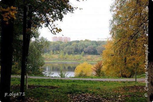 Здравствуйте!!!  Прошла уже половина октября и природа не перестаёт нас радовать своим теплом (сегодня обещали +19,у меня сейчас,в 11часов,показывает +15 в тени))  и красотой!!! фото 42