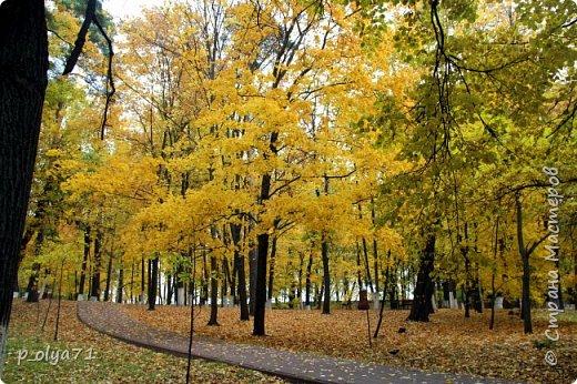Здравствуйте!!!  Прошла уже половина октября и природа не перестаёт нас радовать своим теплом (сегодня обещали +19,у меня сейчас,в 11часов,показывает +15 в тени))  и красотой!!! фото 29