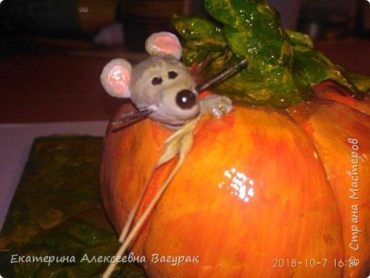 Сладкая тыква растет в огороде, И мышкам вкуснее ничего нет в природе! Е.А.Вагурак фото 4