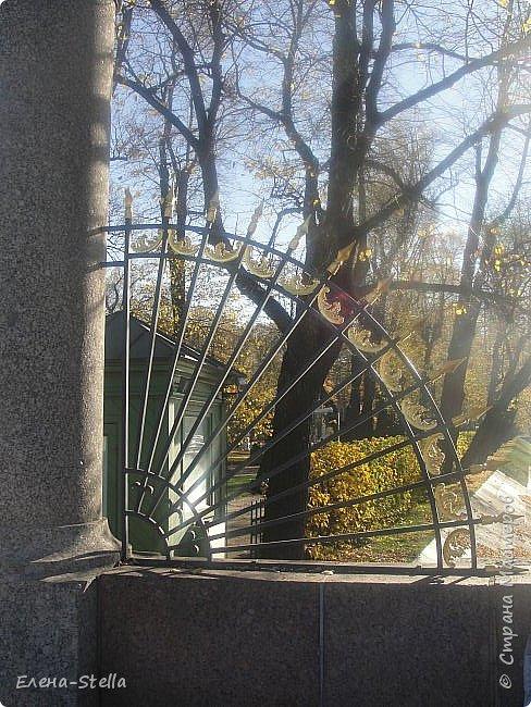 А теперь Летний САД. Сама давно не была. Произведенна реконструкция сада 1716 года, то есть с года создания. Все фантаны были утрачены наводнением и были закопаны.  Теперь можно полюбоваться ими, совсем как в Петергофе. Восстановлен голубиный повельон в который можно зайти и посмотреть небольшой фильм о реконструкции сада и посмотреть находки при раскопках.Сад разделен на две части.  Если заходить с Невы - камерные аллеи, очень уютные и интимные.  Вторая чась ближе к Инженерному замку оставленна как было раньше - простор, но шпалерные огрождения есть,  только они ниже и сами аллеи гораздо шире! В саду давольно тихо, пахнет прелыми листьями и звуки шероха настраивают на лерический лад. Так и кажется, что сейчас из-за поворота выйдет прекрасная дама с кавалером. Представляю как красиво, когда здесь проводится костюмированные гулянья! фото 1