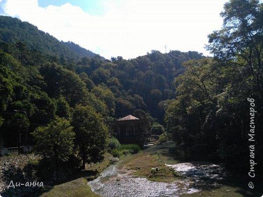 Красота Абхазии фото 14
