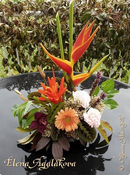 Добрый день! Сегодня я к вам снова с композициями из цветов . Этим летом я решила осуществить еще одну свою мечту - научится цветочному дизайну. Очень люблю цветы, травки-муравки, деревья и вообще все растения. Очень увлекательно работать с цветами! Я взяла небольшой курс по цветочному дизайну. Дома делаю оранжировки из того что под рукой, беру цветы которые найду, даже полевые и из своего садика.  Конечно сейчас все цветы в садике отцвели... поэтому приношу из магазина где работаю. Другие композиции делала для цветочного магазина где начала работать. Делюсь красотой! фото 3