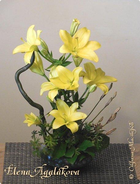 Добрый день! Сегодня я к вам снова с композициями из цветов . Этим летом я решила осуществить еще одну свою мечту - научится цветочному дизайну. Очень люблю цветы, травки-муравки, деревья и вообще все растения. Очень увлекательно работать с цветами! Я взяла небольшой курс по цветочному дизайну. Дома делаю оранжировки из того что под рукой, беру цветы которые найду, даже полевые и из своего садика.  Конечно сейчас все цветы в садике отцвели... поэтому приношу из магазина где работаю. Другие композиции делала для цветочного магазина где начала работать. Делюсь красотой! фото 7