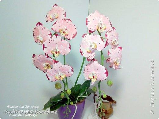Добрый день мастера и мастерицы!!!У меня очередная порция орхидей разной окраски .Первую раскрашивала по МК Инны Голубевой. фото 1