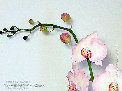Добрый день мастера и мастерицы!!!У меня очередная порция орхидей разной окраски .Первую раскрашивала по МК Инны Голубевой. фото 5