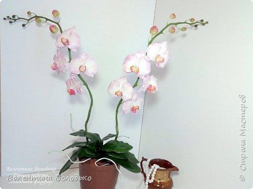 Добрый день мастера и мастерицы!!!У меня очередная порция орхидей разной окраски .Первую раскрашивала по МК Инны Голубевой. фото 4