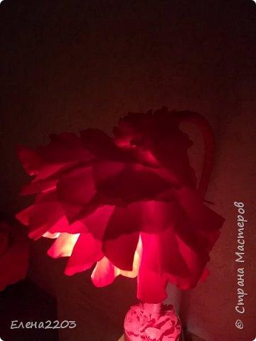 Настольный светильник. фото 2