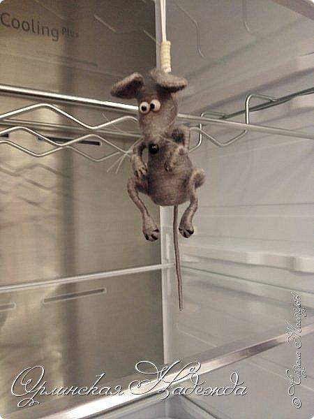Пусто в холодильнике.... Просто полный шиш... Облизал верёвочку, Доедаю мышь..... фото 4