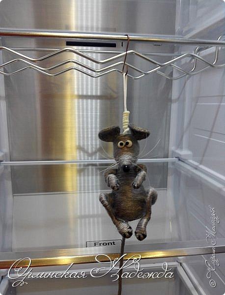 Пусто в холодильнике.... Просто полный шиш... Облизал верёвочку, Доедаю мышь..... фото 6