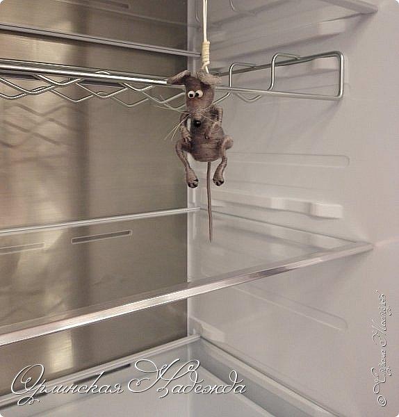 Пусто в холодильнике.... Просто полный шиш... Облизал верёвочку, Доедаю мышь..... фото 7