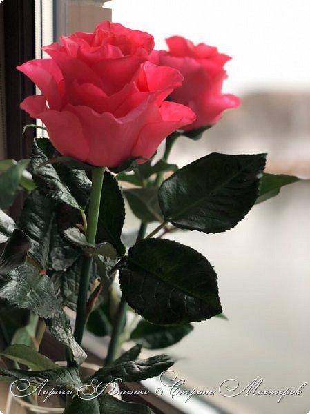 Добрый день! Совсем забыла показать мою недавнюю работу) Солнышка не было, а розы нужно было уже отдавать.  фото 4