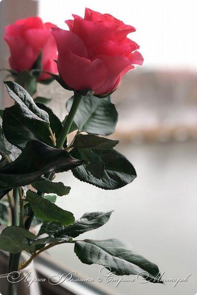 Добрый день! Совсем забыла показать мою недавнюю работу) Солнышка не было, а розы нужно было уже отдавать.  фото 1
