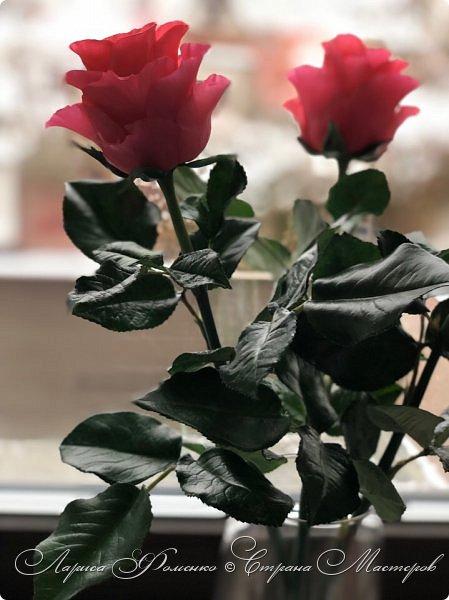 Добрый день! Совсем забыла показать мою недавнюю работу) Солнышка не было, а розы нужно было уже отдавать.  фото 5