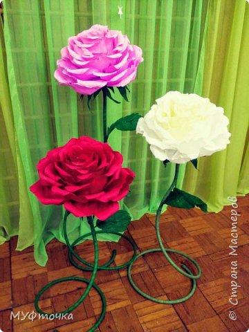 Ростовые цветы из гофр.бумаги) фото 1