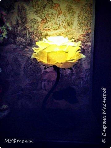 Ростовые цветы из гофр.бумаги) фото 9