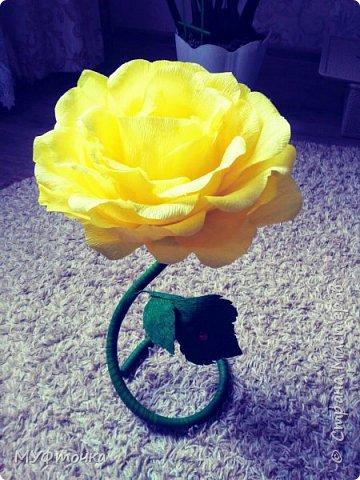 Ростовые цветы из гофр.бумаги) фото 7