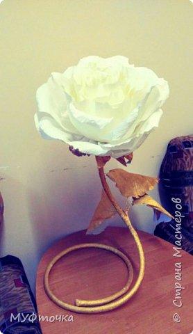 Ростовые цветы из гофр.бумаги) фото 5