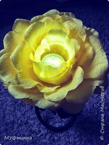 Ростовые цветы из гофр.бумаги) фото 8
